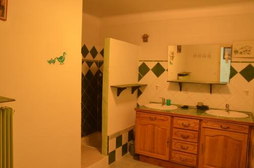 Green bathroom...